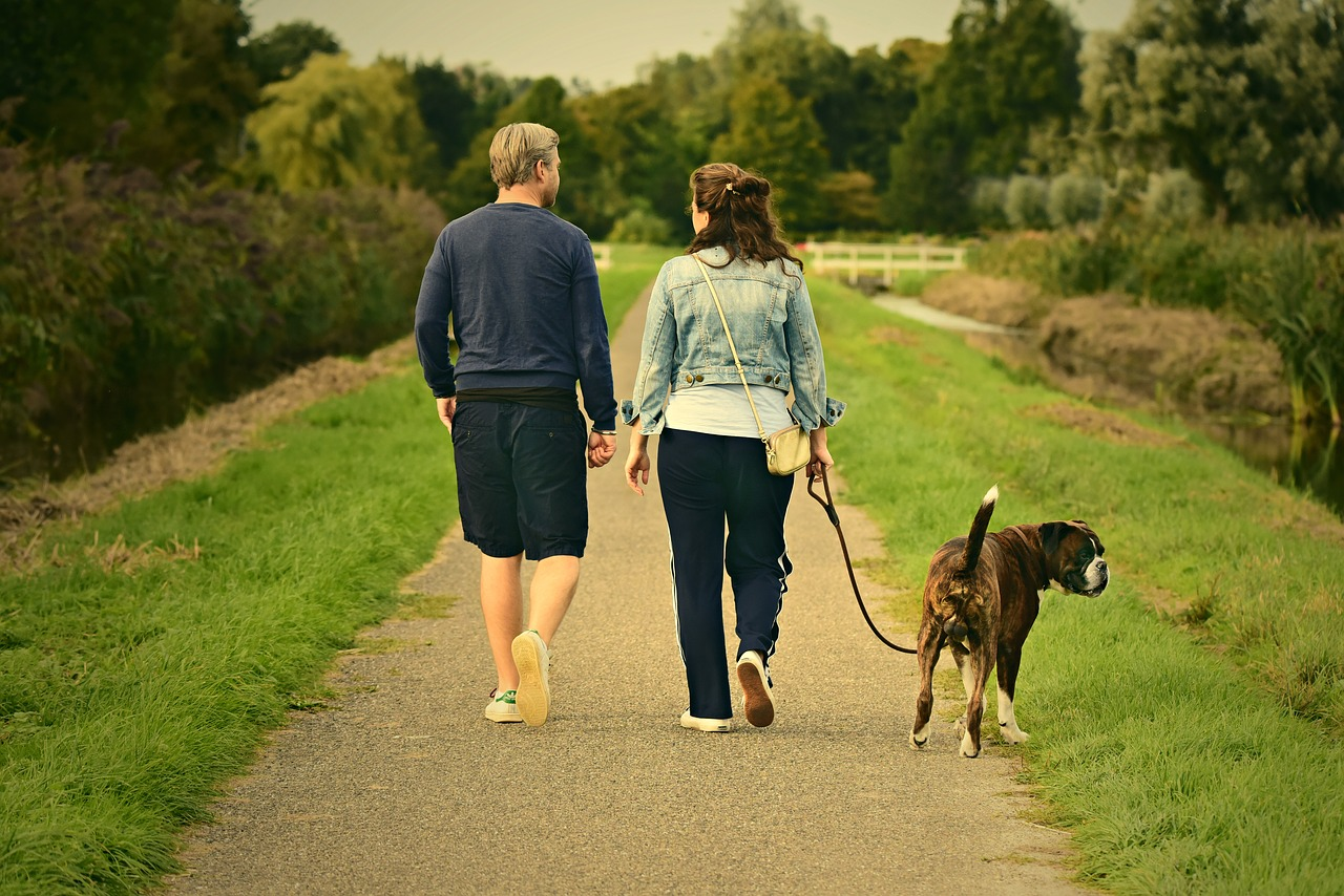 The Benefits of Brisk Walking for Fat Loss and Overall Health